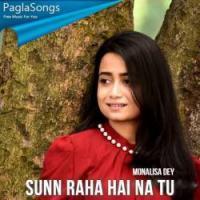 Sunn Raha Hai Na Tu Song - Monalisa Dey Banner