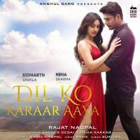 Dil Ko Karaar Aaya Song Yasser Desai Banner