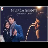 Never Say Goodbye Mp3 Song Download Banner