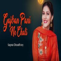 Amra Aali Hoor Pari Mp3 Song Download Banner
