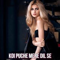 Koi Puche Mere Dil Se - Sahir Ali Bagga Mp3 Song Pagalworld Download Banner