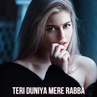 Teri Duniya Mere Rabba - Sahir Ali Bagga Mp3 Song Pagalworld Download Banner