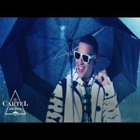 Don Don Daddy Yankee Mp3 Song Download Banner