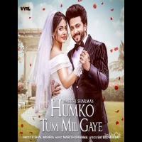 Humko Tum Mil Gaye (Naresh Sharma) Pagalworld Banner