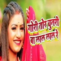 Gori Tor Chunri To Lal Lal (Matal Dance Mix)Dj Suman Np X Dj Sanjib Banner