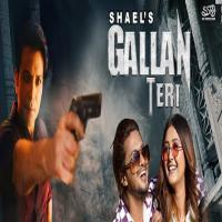 Gallan Teri - Shael Oswal Banner
